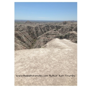 www.theeditorsnote.com Author Kari Trumbo (1)