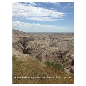 www.theeditorsnote.com Author Kari Trumbo (2)